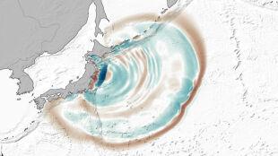 W dobę fala przemierza cały Pacyfik. Zobacz drogę tsunami z marca 2011