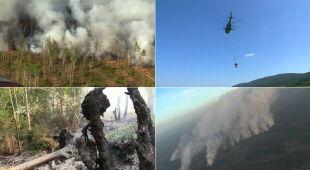 Pożary syberyjskich lasów