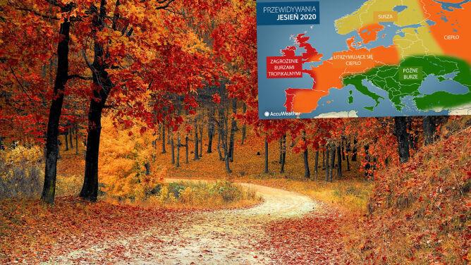 Jaka będzie jesień w Europie? Przewidywania Amerykanów