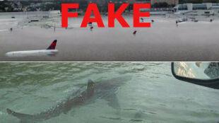 Rekin ludojad i podwodne lotnisko. Najdziwniejsze fejkowe zdjęcia po huraganie Harvey